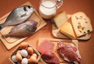Las Proteínas en la Dieta