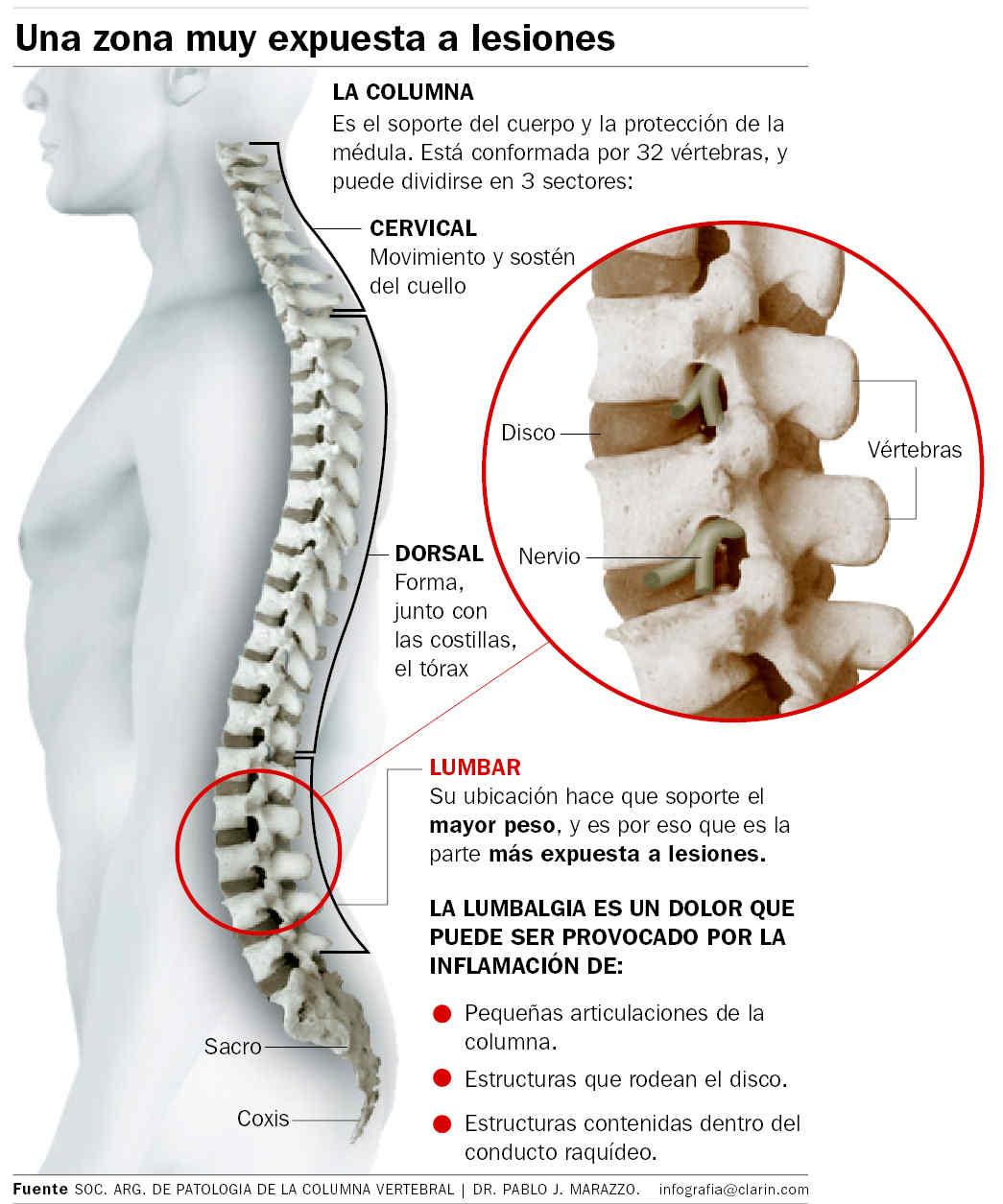 Clave para fortalecer la espalda
